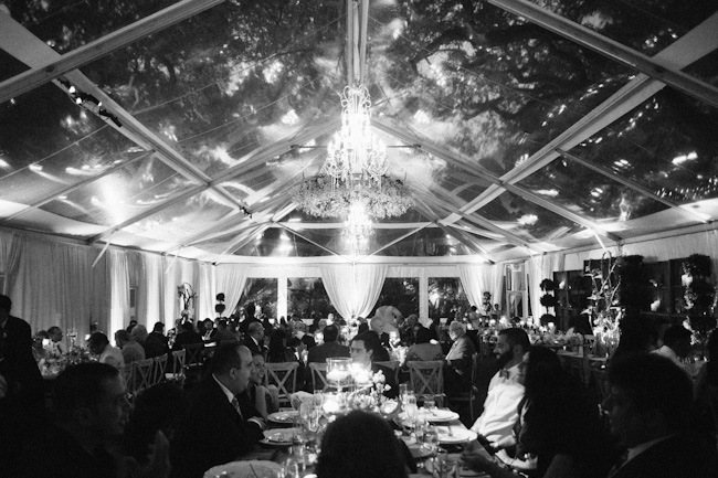 DSC 1919 Abraham and Alexis / Villa Woodbine wedding
